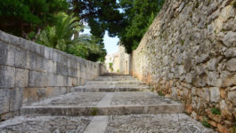 Sucuraj, Island Of Hvar, Croatia - photo3